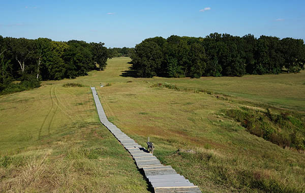 Stairs up the main 'bird mound' at Poverty Point