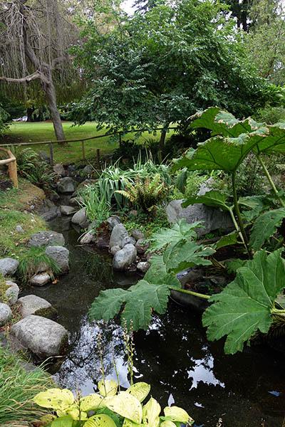 Garden in Chetzamoka Park