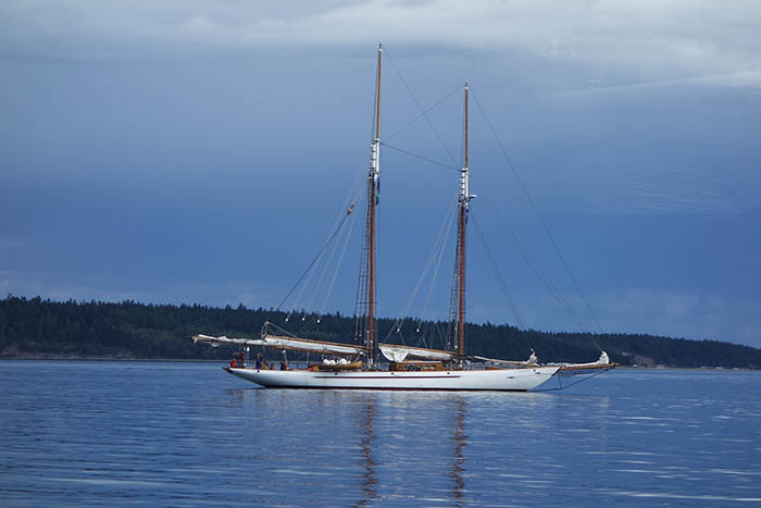 Sailboat motoring away from Port Townsend