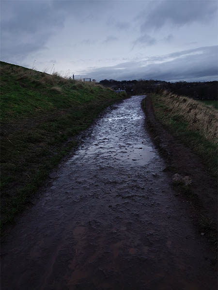 The trail near Arthur's Seat... pure mud
